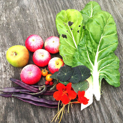 Eat and Choose Organic